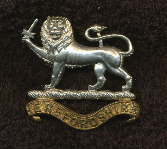 [1st Battalion Herefordshire Light Infantry - 'C' Company]
